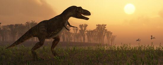 dinosaur_550